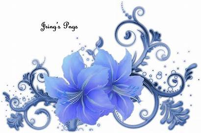 Lily Jring