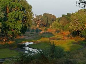 Visiter L Afrique : visiter l 39 afrique du sud libre voyageur ~ Dallasstarsshop.com Idées de Décoration