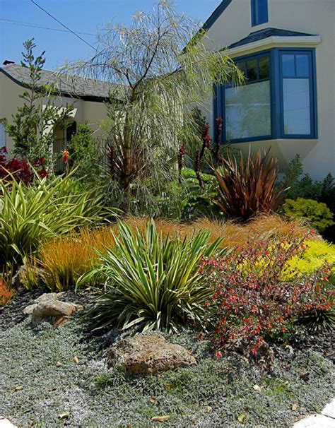 garden design drought tolerant pdf