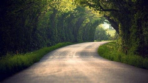 path nature blurred tunnel trees road wallpapers hd