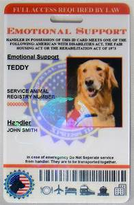 586 emotional support animal patches id cards