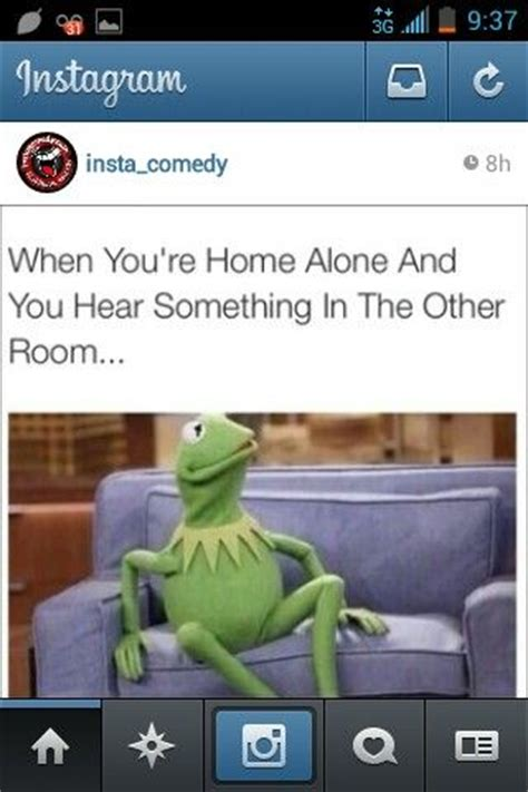 Funny Home Alone Memes - home alone kermit memes instagram funnies pinterest home lol and kermit