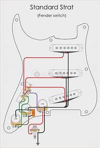 Fender Stratocaster Wiring Diagram Bridge Tone At Manuals