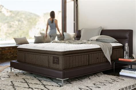 stearns and foster mattress 16 mattress brands that help with chronic