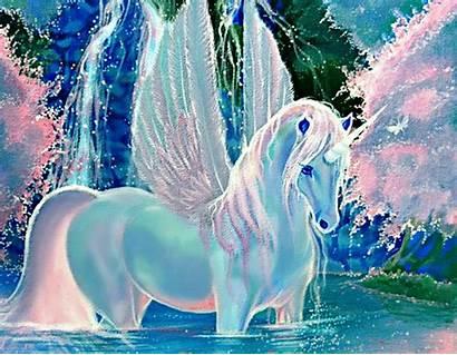 Unicorn Desktop Wallpapers Rainbow Pegasus Cat Unicorns