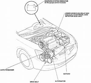 I Need The Diagram That Shows How The Drive Belt Goes On A
