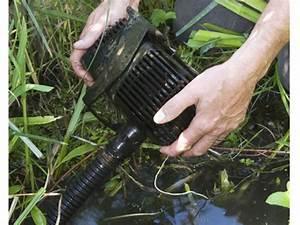 Pompe A Eau Jardin : choisir les pompes et filtres pour le bassin ~ Premium-room.com Idées de Décoration