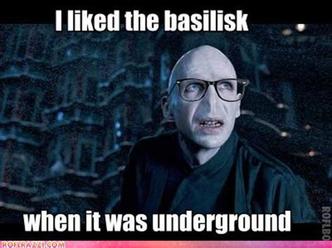 Voldemort Meme - hipster voldemort biggerstaff family photo 27946086 fanpop