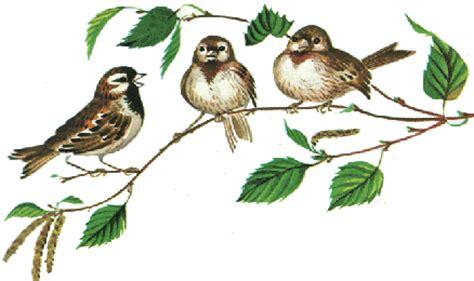 chambre nuit d amour bonne journée et gifs oiseaux animés le de claudie