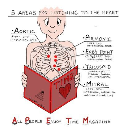 5 Areas Of Auscultation For Heart Sounds (i Use A. Insurance Agent Management Software. Acr38 Smart Card Reader Driver. Home Loan Sbi Interest Rate Free Iphone Vpn. School For Automotive Engineering. College Fort Lauderdale Central Florida Title. Online Masters Communication. Certified Information Systems Security Professional Cissp Exam. Sales Force Training Ppt Simsbury Bank Online