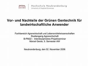 Vinylboden Vor Und Nachteile : vor und nachteile der gr nen gentechnik f r landwirtschaftliche anwe ~ Watch28wear.com Haus und Dekorationen