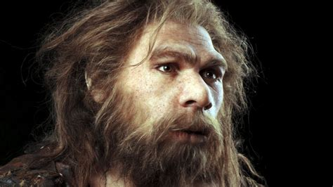 neanderthals and humans interbred 100 000 years ago deskarati