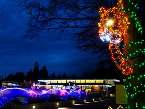 the best light displays in the seattle area