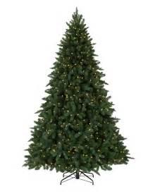 austrian spruce christmas tree tree classics