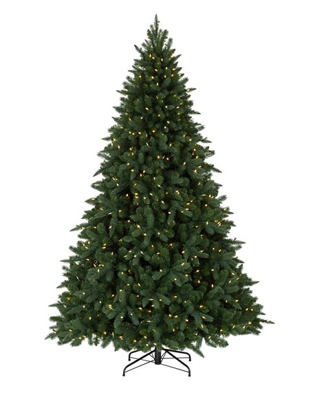 christmas tree without lights austrian spruce tree tree classics