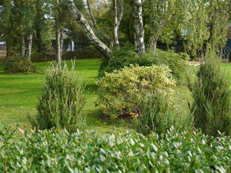 Garten Mieten Ostsee by Reetdachhaus Hummer Dar 223 Ostsee Ferienhaus In Born Mieten