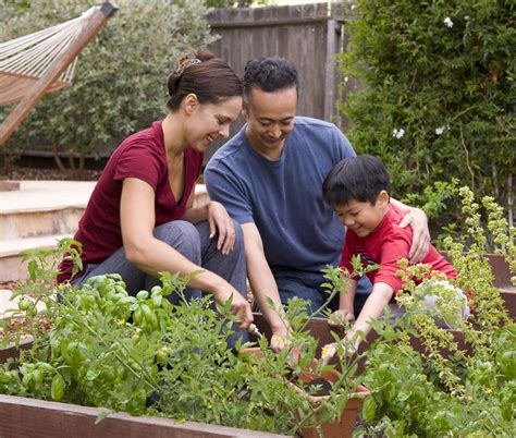 4 Reasons To Can Your Fruits And Veggies Wmeac
