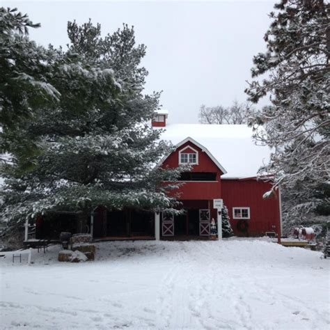 cut your own tree at these 13 wisconsin christmas tree farms