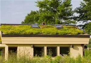 Extensive Dachbegrünung Aufbau : extensive dachbegr nung aufbau das sollten sie wissen ~ Whattoseeinmadrid.com Haus und Dekorationen