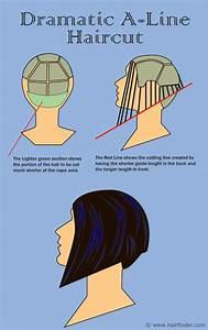 65 Best Diagram Haircut Images On Pinterest