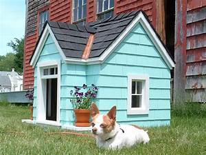 doghouse green eggs and hamlet With dog house windows