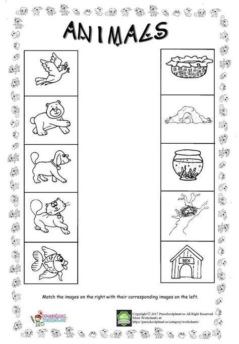 animal worksheet for kids animal worksheets worksheets for kids preschool worksheets