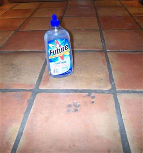 saltillo tile cleaning tucson 1000 images about cleaning on cats seals