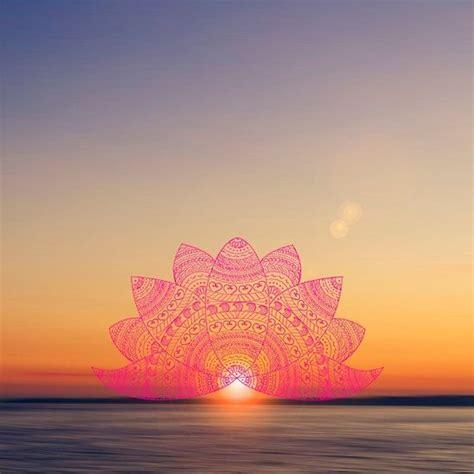 pink lotus mandala petals blurred sunset sun light