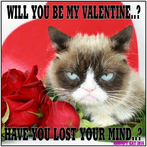 Grumpy Cat Meme Valentines Day - another grumpy cat meme by the other grumpy kat 2016 grumpy cat hates valentines day 01 grumpy