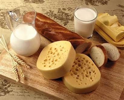 Bread Cheese Milk Foods