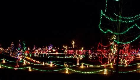 best 28 zootastic christmas lights zootastic park of