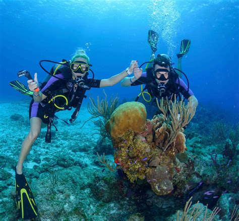 cozumel dive trips dive paradise