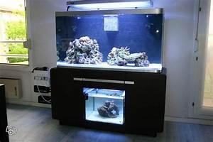 360 Liter Aquarium : aquarium osaka 360 ~ Sanjose-hotels-ca.com Haus und Dekorationen