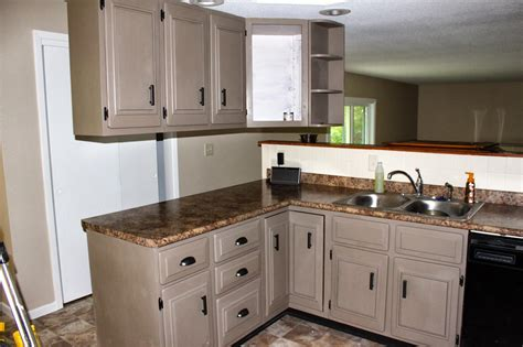 Sophisticated Repainting Kitchen Cabinets Repainting