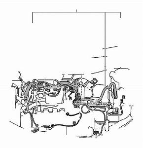 Toyota Camry Engine Wiring Harness  Wire  Engine