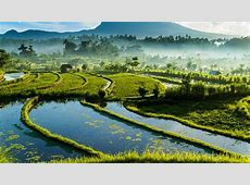 Off the tourist trail in Bali the best lessvisited spots