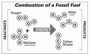 Diagram Of How Fossil Fuels Are Made How A Fossil Is Made ...