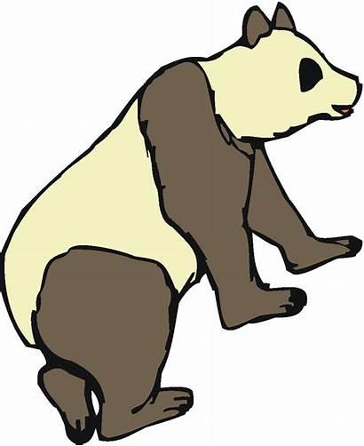 Sloth Clipart Panda Clip Face Cliparts Clipartpanda