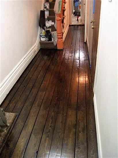Subfloor Floors Hardwood Wood Floor Hallway Varnished