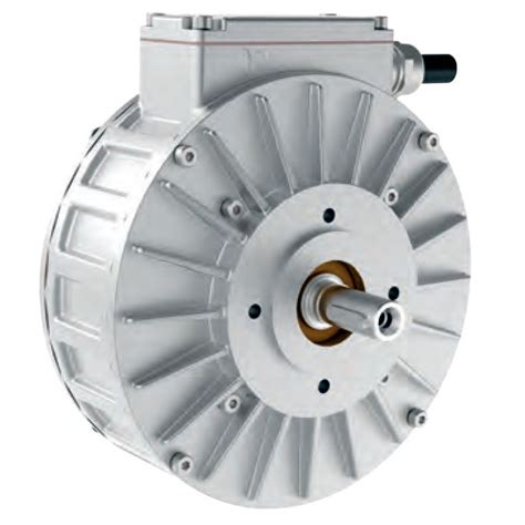 Elec Motors by Synchronous Motor Heinzmann Pms150l 96vdc