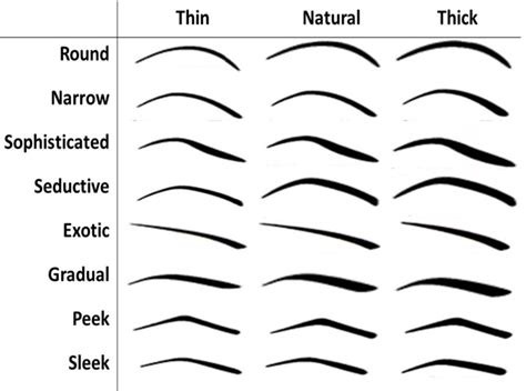 types  eyebrows    shape  perfectly