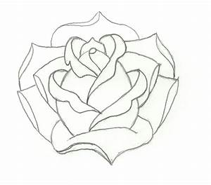 Rose Outline | Embroidery | Pinterest | Roses and Rose outline