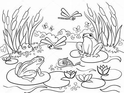 Coloring Paisajes Colorear Paisaje Adultos Animales