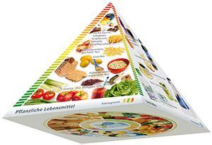 ernaehrungspyramide lebensmittelpyramide stoffwechselkur info