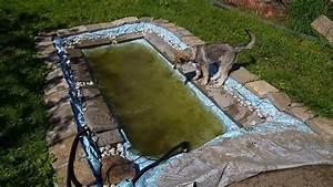 Hundeplanschbecken Selber Bauen : chenoa im hunde pool youtube ~ Markanthonyermac.com Haus und Dekorationen