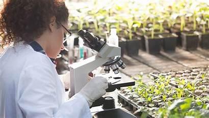 Environmental Science Scientist Career Careergirls Does Medicinal