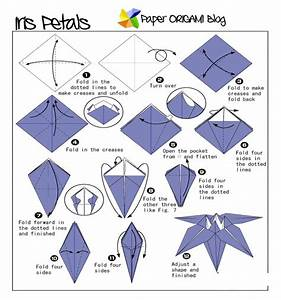 Flowers Origami: Iris Flowers | Paper Origami Guide