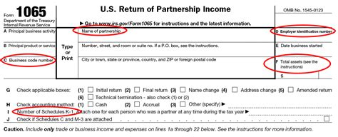 form 1065 information for partnership tax