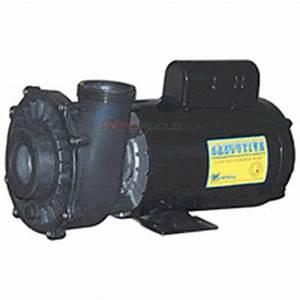 Waterway Executive 56 Pump