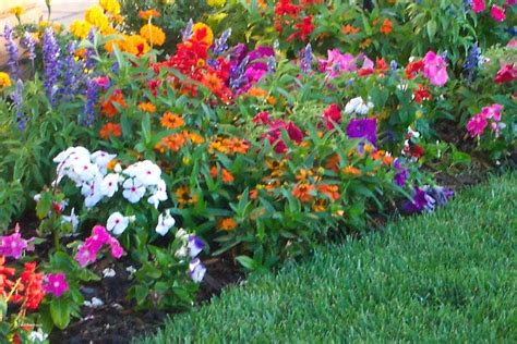 beautiful backyard flower gardens beautiful backyard ideas